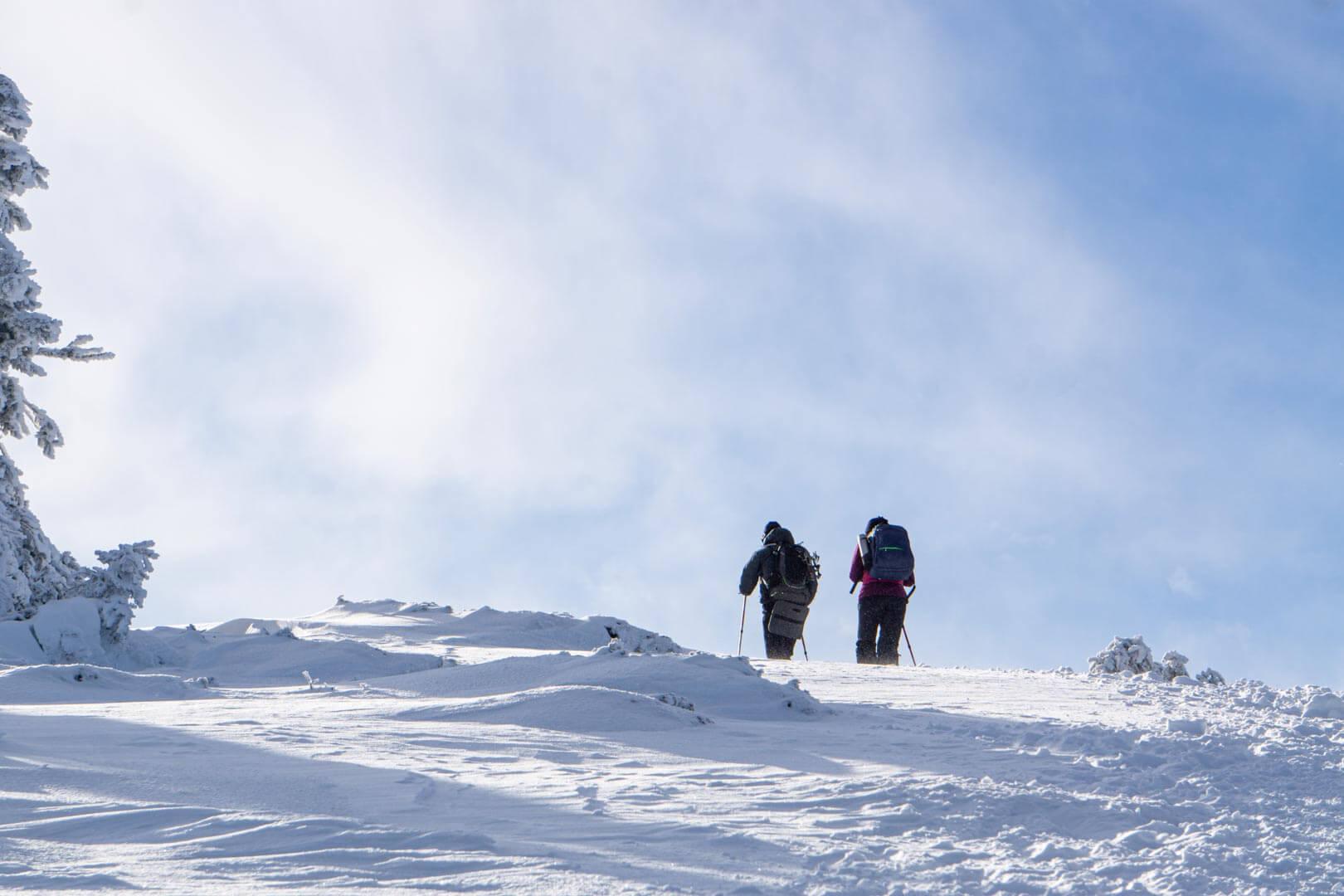Зимове сходження на Говерлу